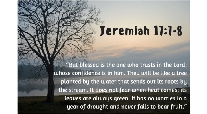 """But blessed is the one who trusts in the Lord; whose confidence is in him.8 They will be like a tree planted by the water that sends out its roots by the stream.It does not fear when"